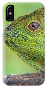 Dragon Forest And Frog IPhone Case