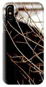 Dreaming Of Black Beauty IPhone Case