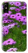 Dreaming Of Purple Daisies  IPhone Case