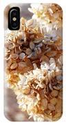 Dried Hydrangea Flowers  IPhone Case