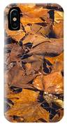 Dried Leaves IPhone Case