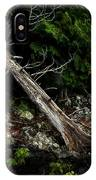 Drifted Tree IPhone Case