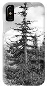 Dry Spruce IPhone Case