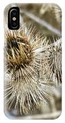 Dry Thistle Buds IPhone Case