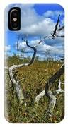 Dry Tree IPhone Case