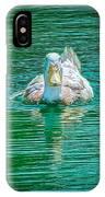 Duck - C IPhone Case