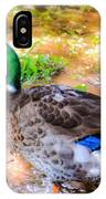 Duck On The Lake 2 IPhone Case