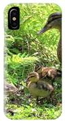 Ducklings Through The Ferns IPhone Case