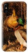 Ducks At Dusk IPhone Case