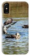Ducks On Colorful Pond IPhone Case