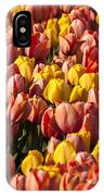Dutch Tulips Second Shoot Of 2015 Part 9 IPhone Case