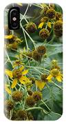 Dying Sun Flowers IPhone Case