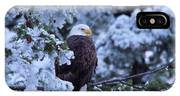 Eagle In A Frosted Tree IPhone Case