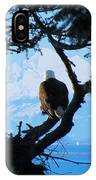 Eagle - Mt Baker - Eagles Nest IPhone Case