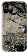 Eagle On The Nest, No. 3 IPhone Case