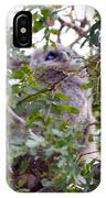 Eagle Owl Chick IPhone Case