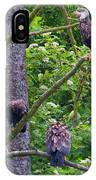Eagle Tree IPhone Case