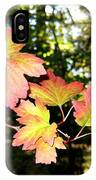 Early Days Of Autumn IPhone Case