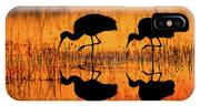 Early Morning Sandhill Cranes IPhone Case