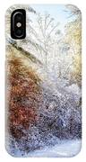 Early Winter's Walk IPhone Case
