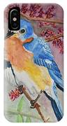 Eastern Bluebird Vertical  IPhone Case