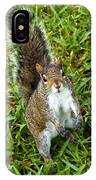 Eastern Gray Squirrel IPhone Case