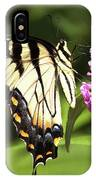 Eastern Triger Swallowtail IPhone Case