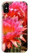 Echinopsis Flowers In Bloom II IPhone Case