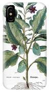 Eggplant, 1735 IPhone Case