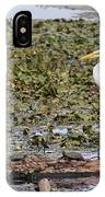 Egret And Turtles IPhone Case