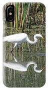 Egret IPhone Case by David Armstrong