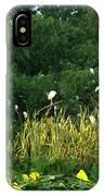 Egrets Nesting IPhone Case