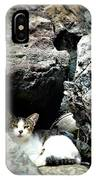 El Gato IIi IPhone Case