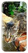 El Gato Iv IPhone Case