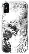 Elephant Portret IPhone Case
