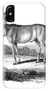Elk Antelope IPhone Case