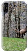 Elk, Blue Ridge Mountain IPhone Case
