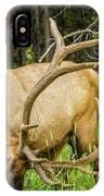 Elk In The Woods IPhone Case