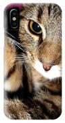 Ellie Cat IPhone Case