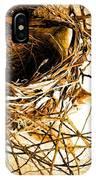Empty Nest IPhone Case