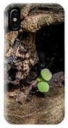 Ends Become Beginnings IPhone Case