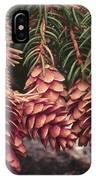 Engelmann Spruce Cones IPhone Case