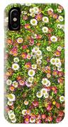 English Daisies At Pelican Inn Near Muir Woods National Monument, California IPhone Case