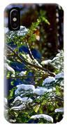 Enlightened Winter IPhone Case