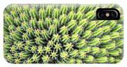Euphorbia IPhone Case