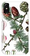 European Larch, Pinus Larix IPhone Case