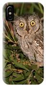 European Scops Owl  IPhone Case