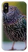 European Starling - Painted IPhone Case