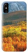 Evening Aspen IPhone Case