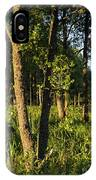 Evening In The Sunshine IPhone Case